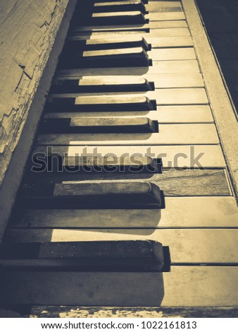 keys of the old piano #1022161813