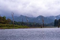 khlong saeng wildlife sanctuary, Mueang Chon at the sounth Thailand, Ranong, Thailand.1