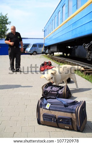 KHMELNITSKY, UKRAINE - JULY 12: Dog handlers are trained in the customs dogs to look for drugs and weapons, July 12, 2012 in Khmelnitsky, Ukraine