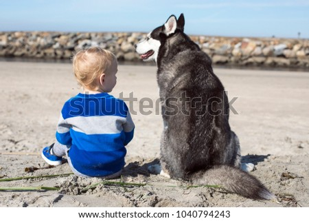 kid and husky dog pet at the...