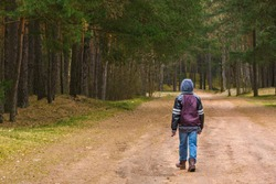 Kid boy alone walking in forest at day time