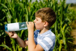 Kid boy drinking water from bottle on hot summer day in nature. Thirsty child.