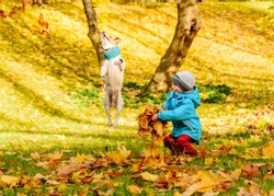 Kid boy enjoying game with his pet dog and autumn fallen leaves