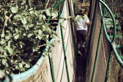 kid boy playing on the tibetan bridge in the adventure park in a sunny day - exploration and fun game concept