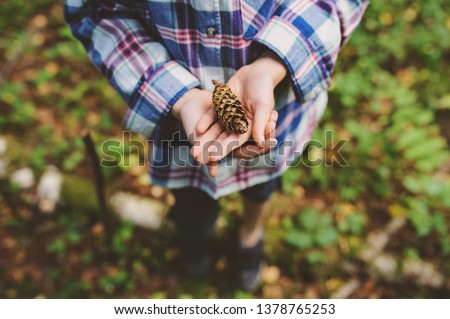 kid girl exploring wild forest, looking at pine cone. Summer camp and earth day concept