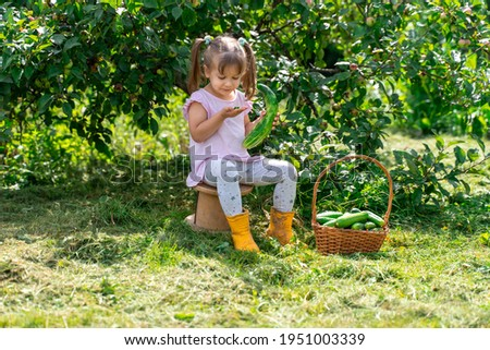 kid girl with basket of cucumbers on the farm. the child took a bite of a bitter cucumber and spat it out. the problem of bitterness in cucumbers. the vegetable became bitter due to lack of water