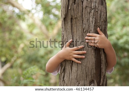 kid hans embracing a tree trunk - stock photo