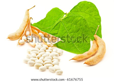 Kidney ( soy ) beans with leaves isolated on white background