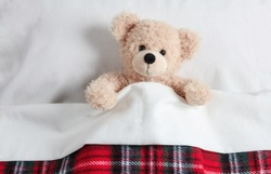 Kids bedtime. Cute teddy covered with a warm blanket, resting in bed