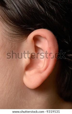 Kids ear\\ Close up of anatomy of human ear.