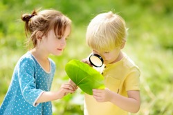 Kids exploring nature with magnifying glass. Close-up. Little boy and girl looking on leaf with magnifier. Summer activity for inquisitive child