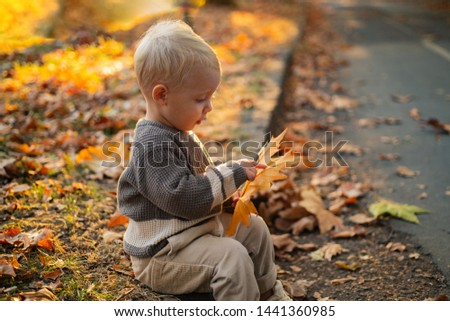 Kids fashion. Happy childhood. Childhood memories. Child autumn leaves background. Warm moments of autumn. Toddler boy blue eyes enjoy autumn. Small stylish baby toddler on sunny autumn day.
