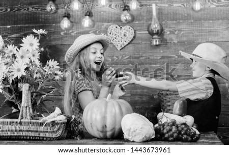 Kids girl boy wear cowboy farmer style hat celebrate harvest festival. Celebrate fall traditions. Elementary school fall festival idea. Autumn harvest festival. Children play vegetables pumpkin.