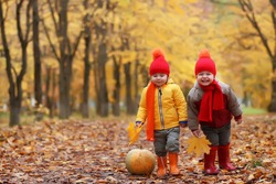 kids in autumn park with pumpkin around fall leaves