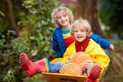 Kids in wheelbarrow on pumpkin patch. Autumn outdoor fun for children in Thanksgiving and Halloween season. Boy pushing wheel barrow on farm field. Child playing in fall garden. Kid picking squash.