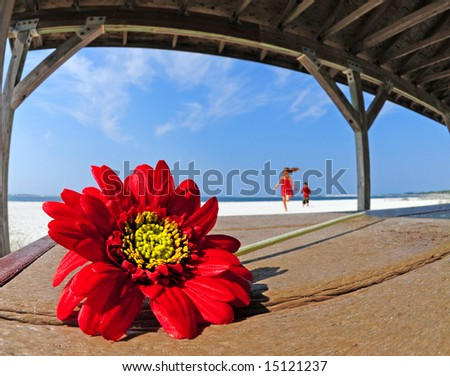 Kids running towards beautiful red gerber daisy on table in beach shelter