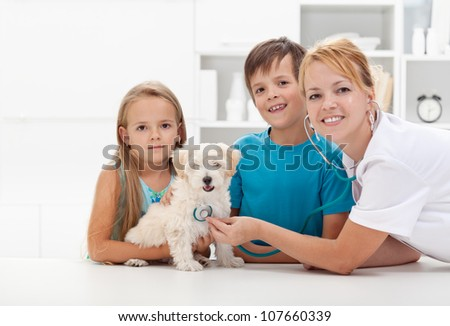 Kids taking their fluffy pet to the veterinary doctor for a checkup - copyspace - stock photo