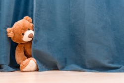 Kids toy brown funny Teddy bear peeks out from behind the blue curtain. stay at home, concept of self quarantine at home as preventative measure against virus outbreak. Copy space