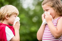 Kids with hay fever or the flue sneezing and cleaning nose with tissue