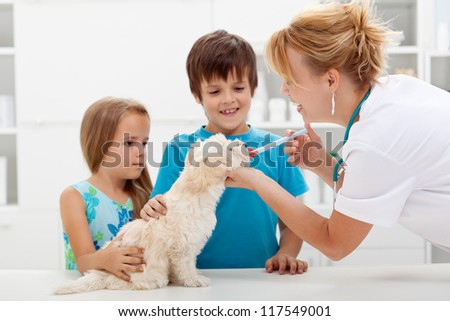 Kids with their pet at the veterinary doctor - fluffy dog receiving medication