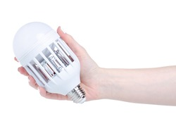kills mosquito light bulb in hand on white background isolation