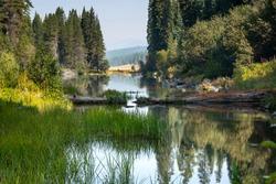 Kimball State Park near Klamath Falls Oregon