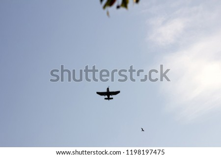 Kind of sports aircraft single screw with massive wings and changing geometry of wing in air. Silhouette of plane, view from below #1198197475