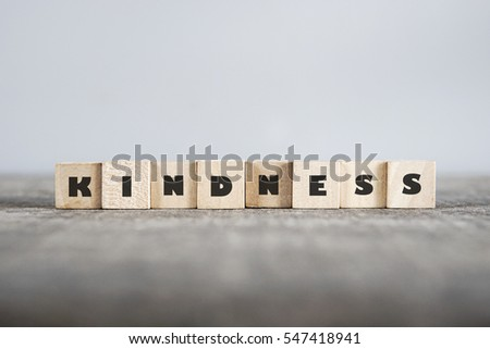 KINDNESS word made with building blocks