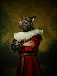 King. Model like medieval royalty person in vintage clothing headed by dog head on dark vintage background. Concept of comparison of eras, artwork, renaissance, baroque style. Creative collage.