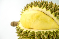 King of fruits, Yellow durian in side Mon Thong durian fruit from white background