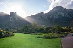 Kirstenbosch Botanical Garden in Cape Town South Africa