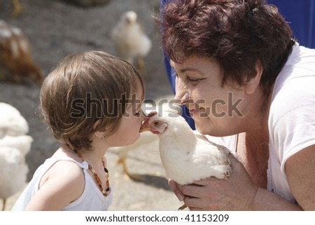 Kissing chicken