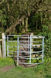 Kissing gate to a wooded area with lush green vegetation and a celandine carpeted floor.