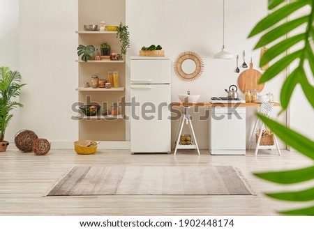 Kitchen carpet on the parquet style, decorative new refrigerator and dishwasher, shelf, mirror, lamp and vase of plant style.