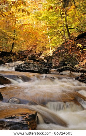 Kitchen Creek flows through rapids in Rickett's Glen State Park, Pennsylvania, shown on an early autumn morning.