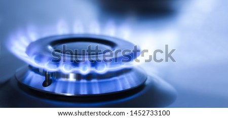 kitchen gas cooker with burning fire propane gas Сток-фото ©