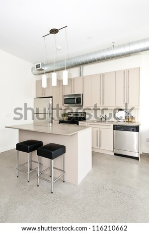 Kitchen in modern loft condo with island and stainless steel appliances