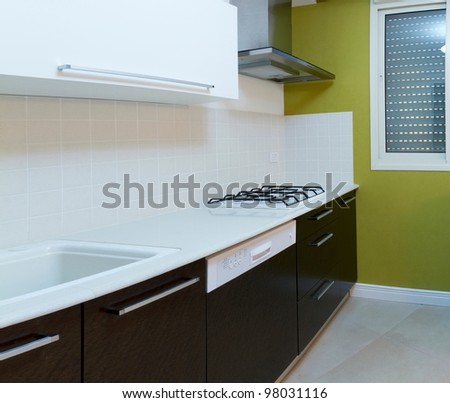 Kitchen modern design with integrated appliances