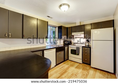Kitchen room in contrast white and black colors. Black cabinets refreshed with white appliances
