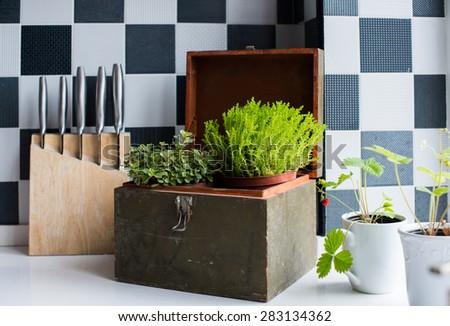 Kitchen utensils, decor and kitchenware in the modern kitchen interior close-up. Home plants on a windowsill.