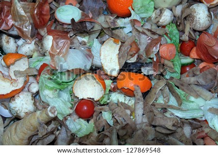 Kitchen waste on a compost heap left to decompose.