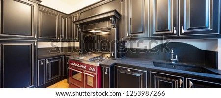Kitchen with black wooden doors and white walls. Nobody inside