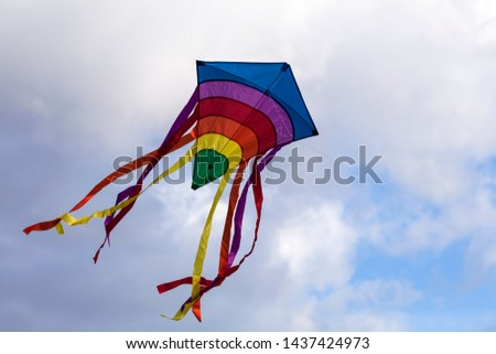 Kite flying flying in sky #1437424973