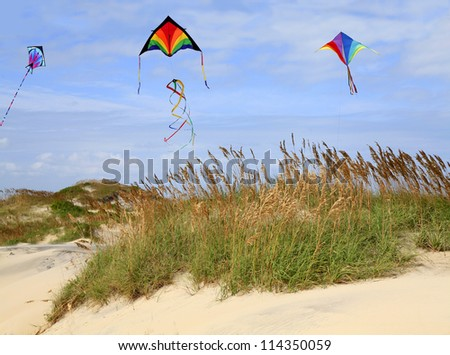 Kite Flying on the Beach, Outer Bank, North Carolina