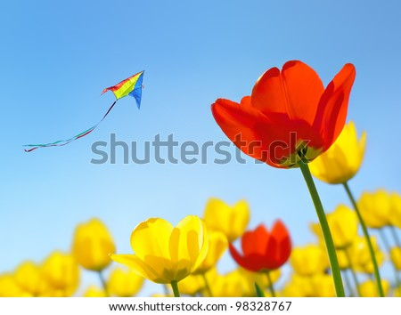 Kite flying soars into the sky over the flowers - stock photo