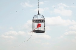 kite imprisoned in a cage in the sky; concept of taking away freedom