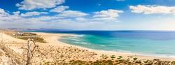 Kite - surfers paradise, Playa De Sotavento on Fuerteventura / Spain