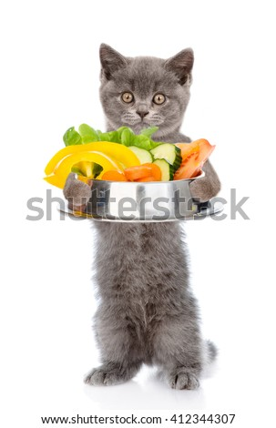 Kitten holding bowl of vegetables. isolated on white background.
