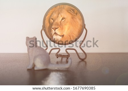 Kitten looks in the mirror and sees himself reflected like a lion. Self-confidence concept. Business or personal growth. ストックフォト ©