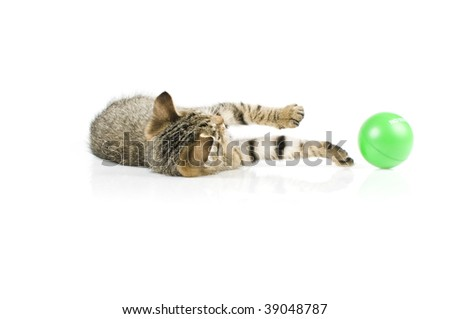 Kitten playing with a green ball